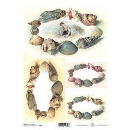 """ΡυζόχαρτοA4 """"shells"""" R408"""