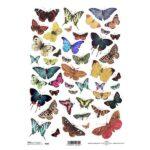 """Ριζόχαρτο """"butterflies 1"""" 21×29εκ. (ITD-R230)"""
