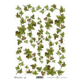 """Ριζόχαρτο """"ivy"""" 21×29εκ. (ITD-R321)"""